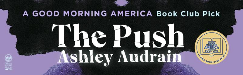 the push ashley audrain