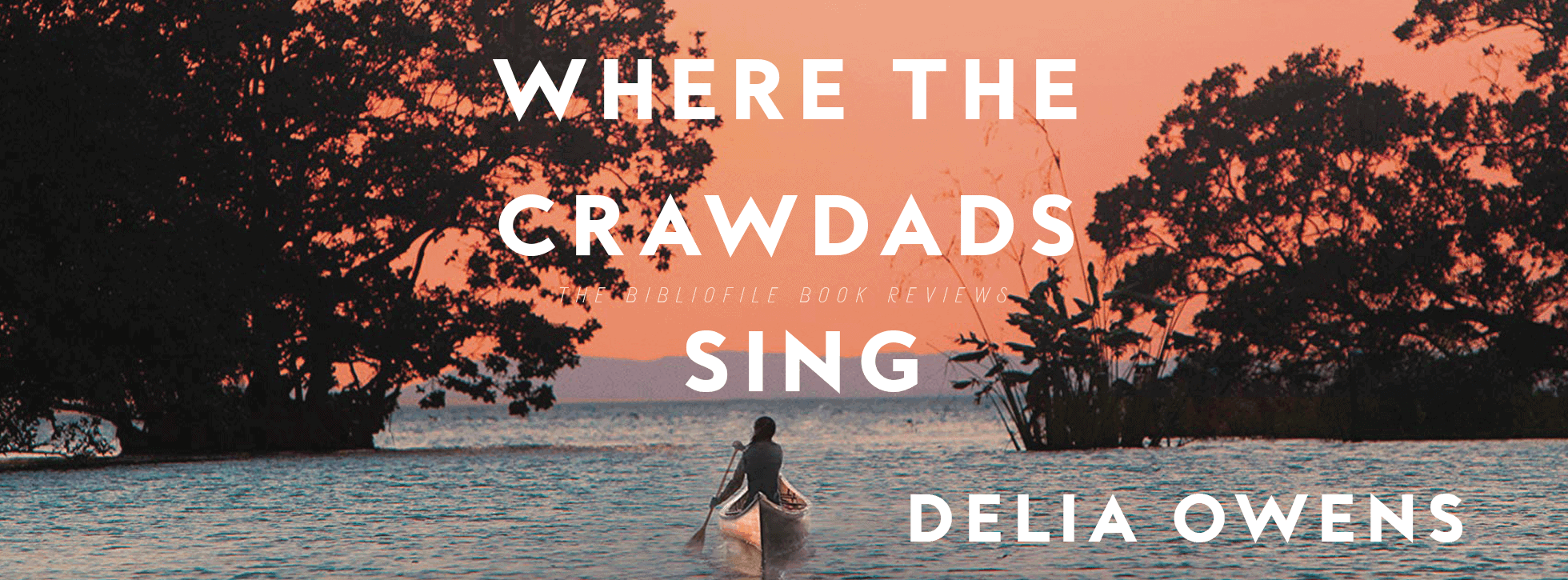 Where the Crawdads Sing Delia Owens book summary plot synopsis ending spoilers explanation