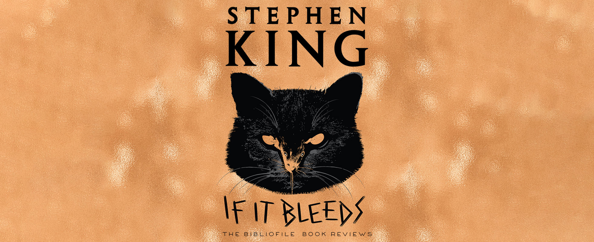 if it bleeds stephen king plot summary book review synopsis spoilers ending
