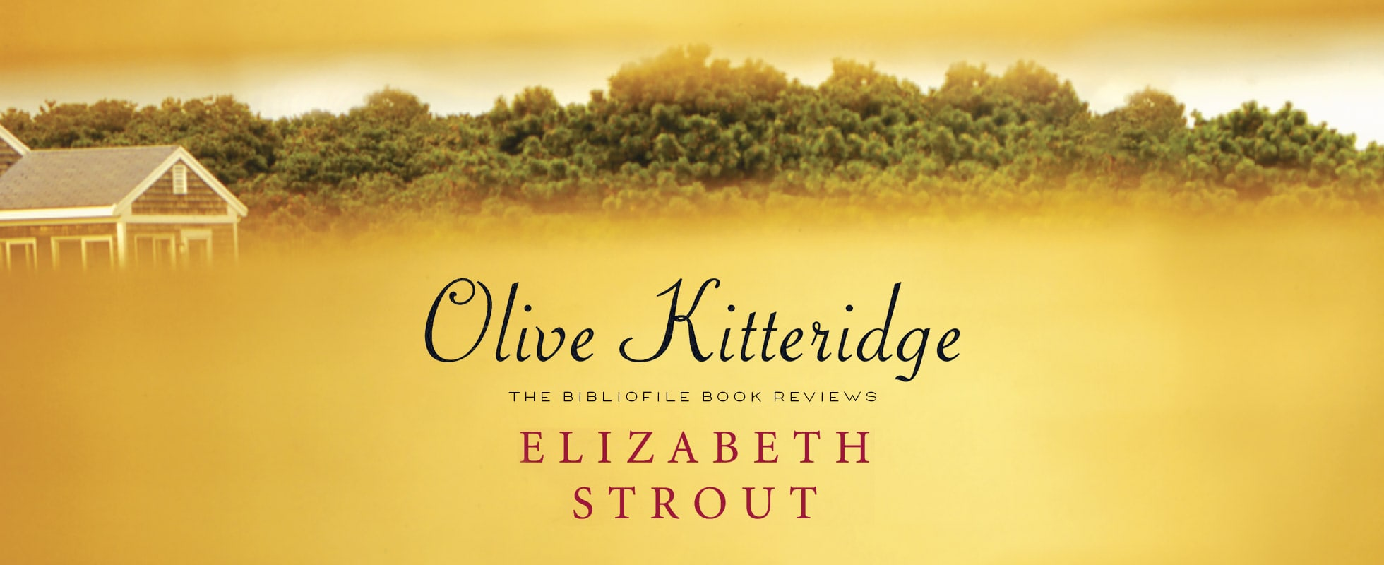 olive again elizabeth strout olive kitteridge book review summary synopsis