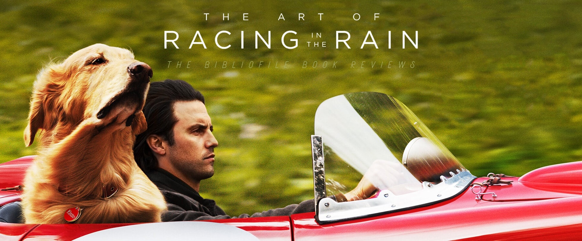 the art of racing in the rain garth stein summary review