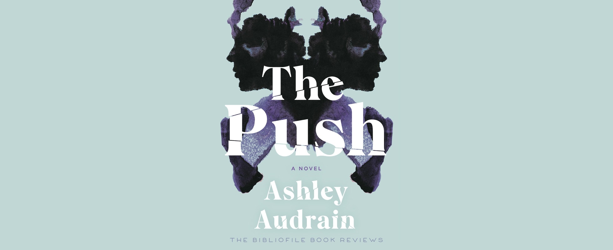 the push by ashley audrain summary recap and review